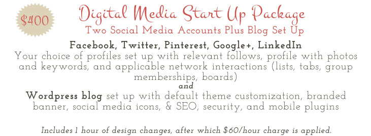 Social Media Virtual Assistant Prices