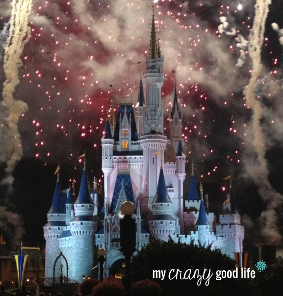 What Disney Means To Us