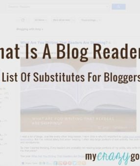 What is a blog reader?