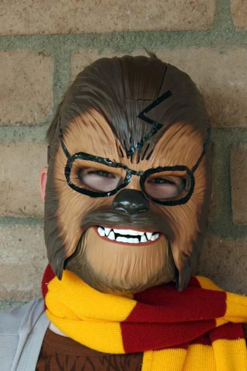 Potterwookie Costume