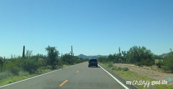 Driving To Rocky Point