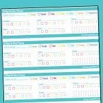 Pocket Size 21 Day Fix Daily Checklist