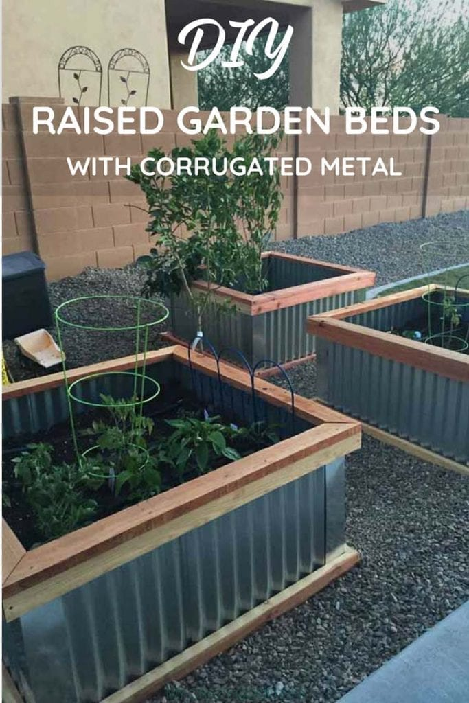 Picture of: Diy Raised Garden Beds With Corrugated Metal