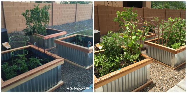diy-garden-boxes