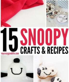 Snoopy Crafts and Recipes