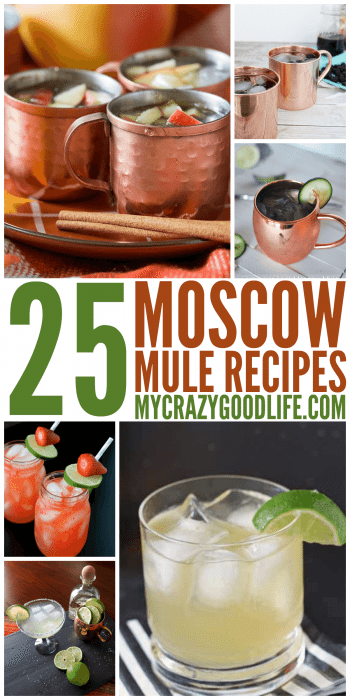 25 Moscow Mule Recipes