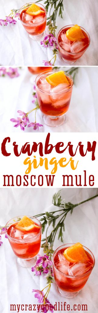 This Ginger Cranberry Mule is the perfect Happy Hour cocktail. Cranberry Vodka, Ginger Beer, Orange Juice, and a splash of Angostura Orange Bitters makes this Ginger Cranberry Mule refreshing and delicious!