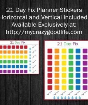 21-Day-Fix-erin-condren-stickers