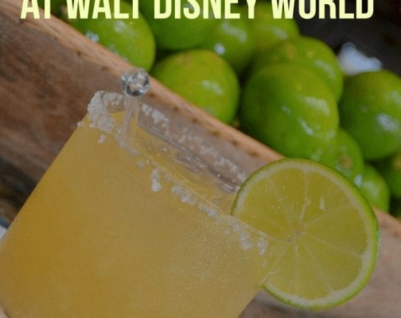 Where to get a Margarita at Walt Disney World