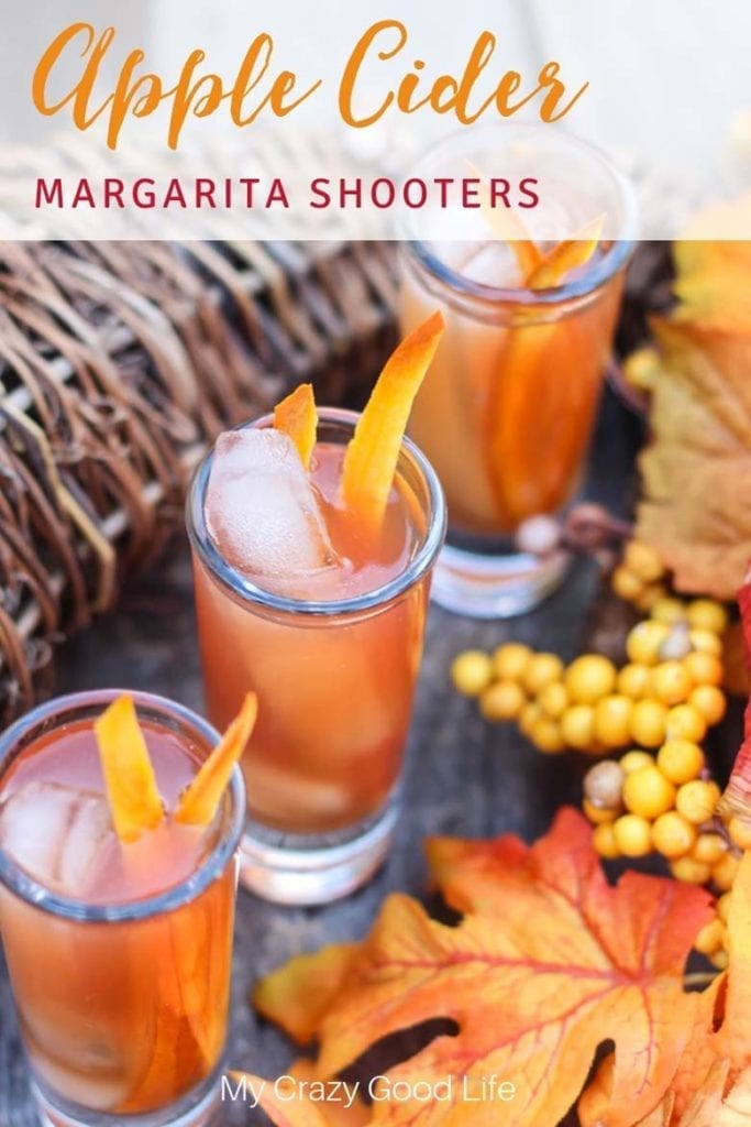 apple cider margaritas with pumpkin zest