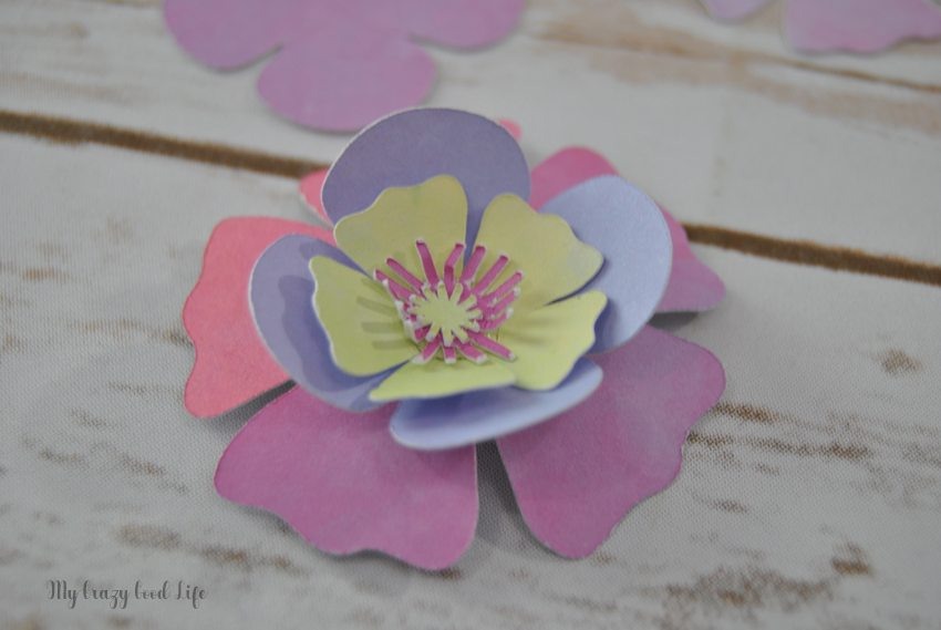 Learning how to make a paper flower can be tricky. Luckily these Cricut paper flowers are gorgeous AND easy to create. Plus, Cricut crafting time is fun!