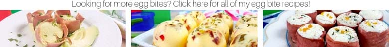 banner for my other egg bite recipes