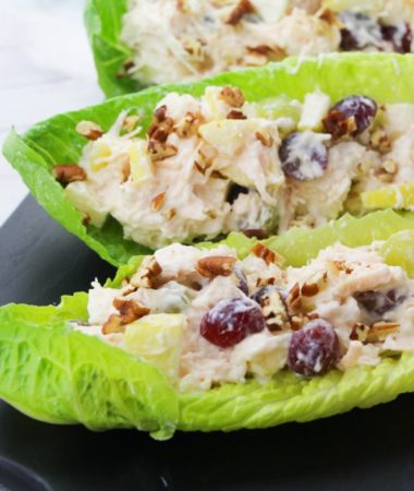 This chicken salad recipe is a great choice for lunches, dinner on the go, and protein filled snacks! Healthy chicken salad with greek yogurt and mayo is a great way to make low calorie chicken salad for sandwiches and apps! 21 Day Fix Chicken Salad   Chicken Salad with Grapes   Chicken Recipes   Chicken Dinner Recipes