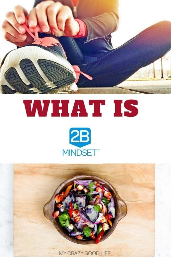 What Is 2B Mindset? An honest review of the program  - My