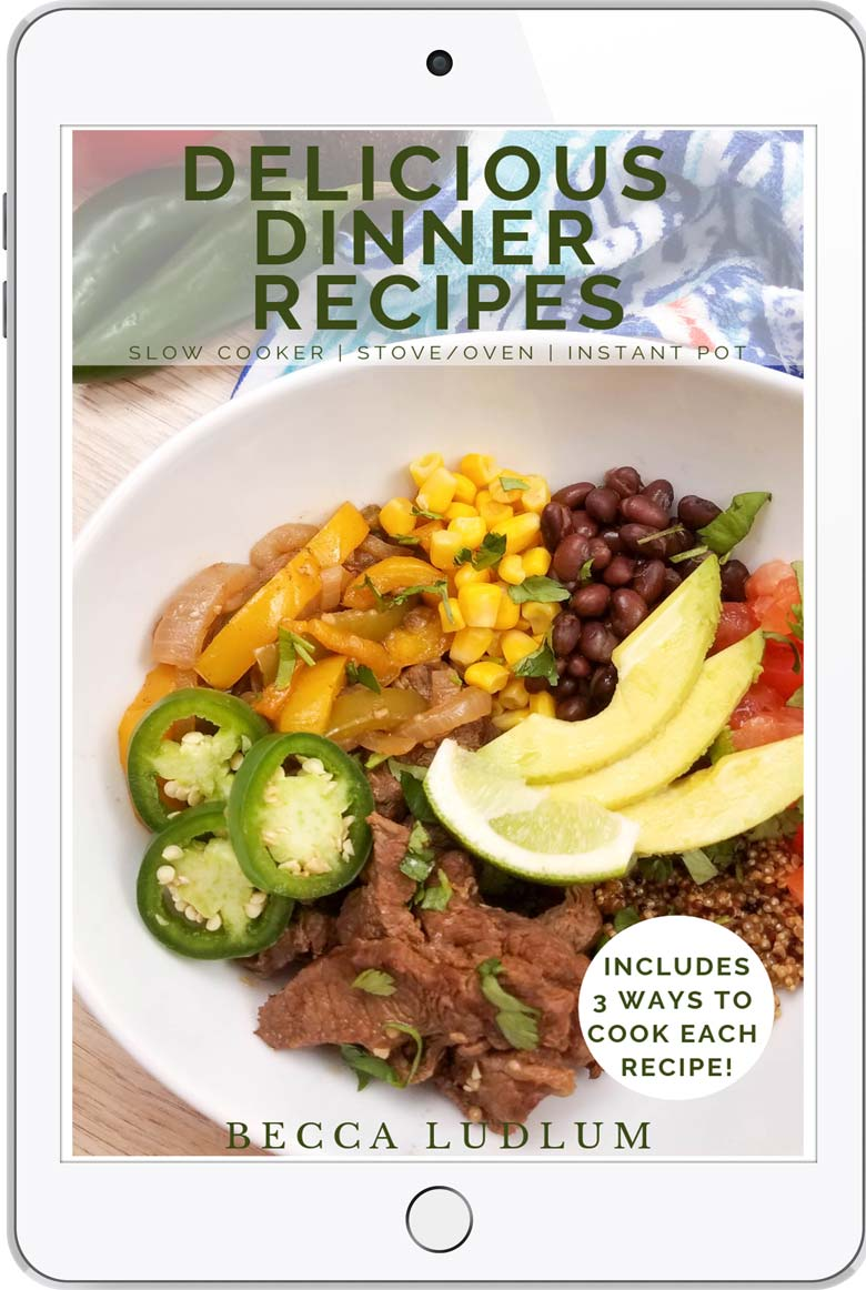 book cover for delicious dinner recipes