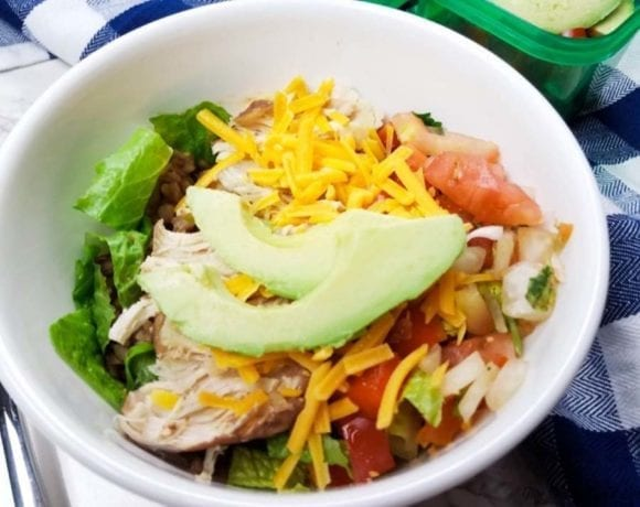Weight Watchers Instant Pot Burrito Bowl