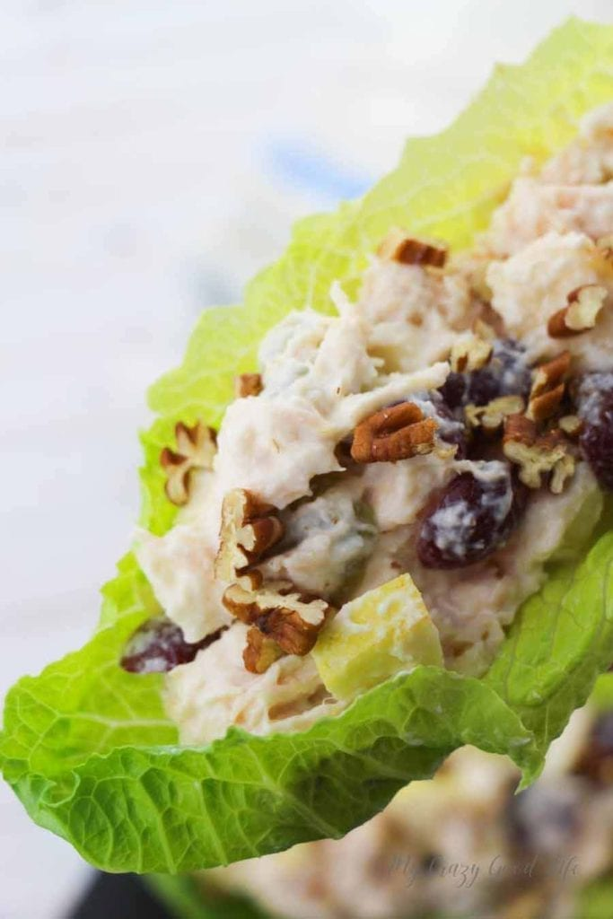 This Weight Watchers Chicken Salad is delicious and so easy to prepare! I love using rotisserie chicken for this, as it is a time saving recipe! Serve this on lettuce, make a chicken salad, or use it in a healthy chicken salad sandwich–it's up to you! Weight Watchers Healthy Chicken Recipe | Weight Watchers Lunch Recipe | Easy Weight Watchers Recipes #weightwatchers #points