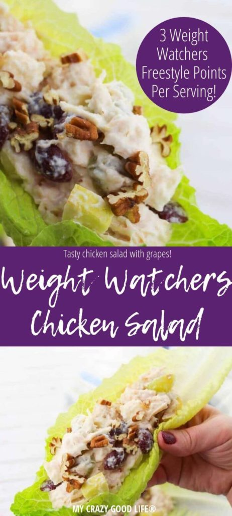 Weight Watchers chicken salad pin showing the finished meal and title in the middle.