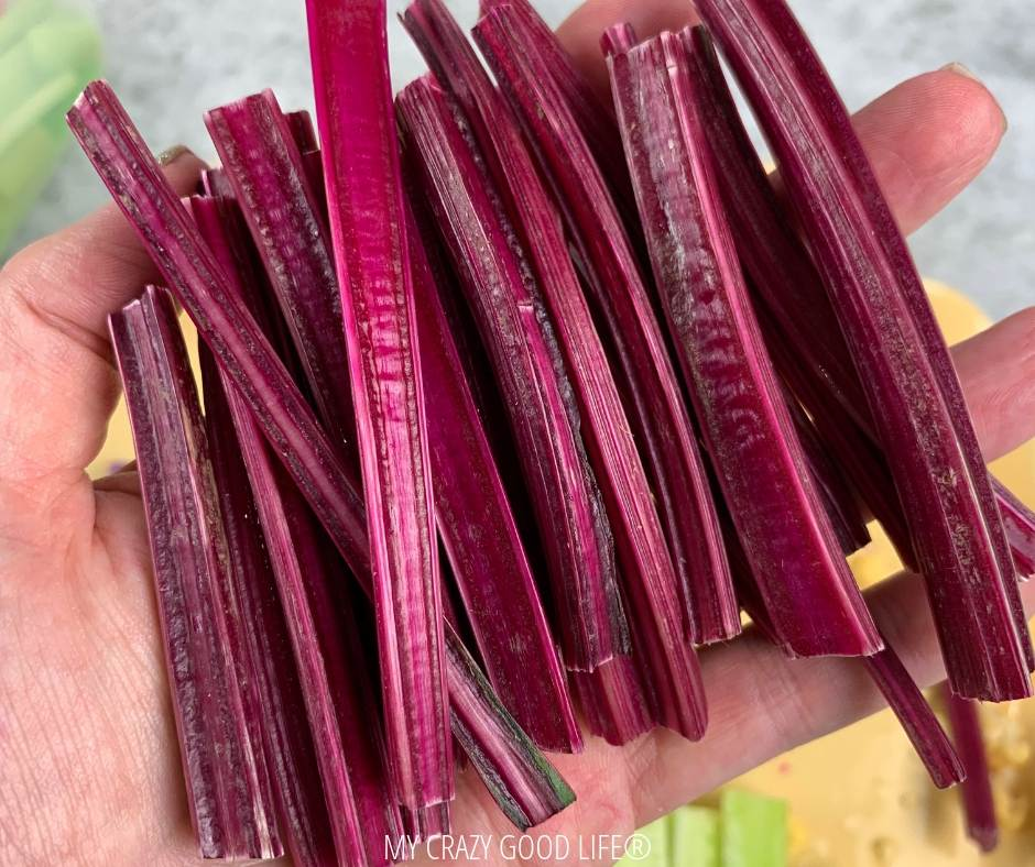 photo of beet stems