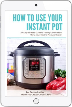 how to use your instant pot ebook cover on ipad