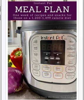 book cover with text and image of instant pot close up