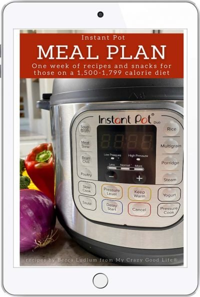 book cover with close up of instant pot and text